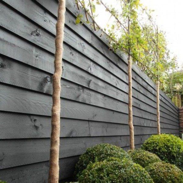 Grenen zwart gedompeld | Steenvoordeel